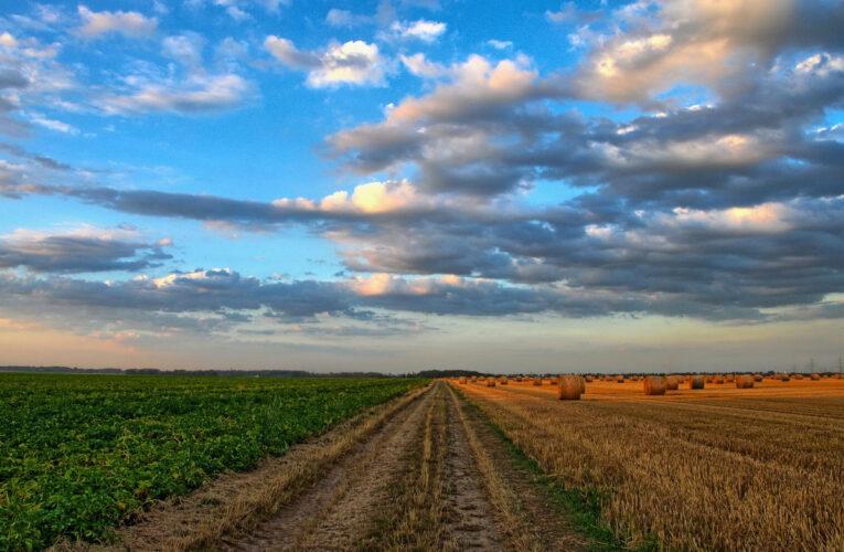 Landbouwgrond: de grootste flop in de DDR-balans