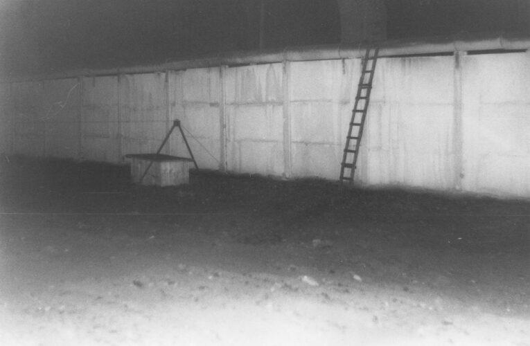 Muurslachtoffer Michael Bittner werd nooit gevonden